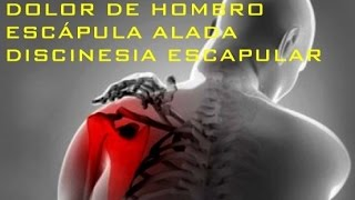 DOLOR DE HOMBRO | ESCÁPULA ALADA | DISCINESIA ESCAPULAR - Parte 2