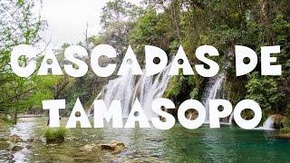 Cascadas de Tamasopo   Descubre San Luis Potosí