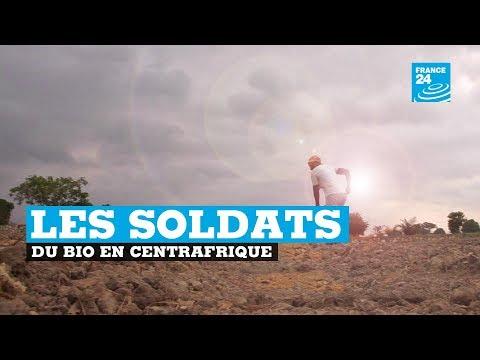 """Une ferme biologique forme des """"soldats de la terre"""" à Bangui"""