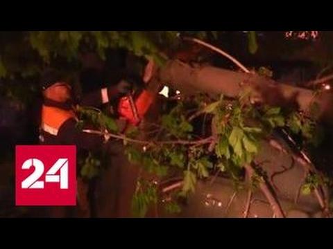Мощный циклон обрушился на юг России