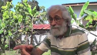 Organic Farming in the Philippines (Reality TV, Se 4 Ep 20: The evening sun!)