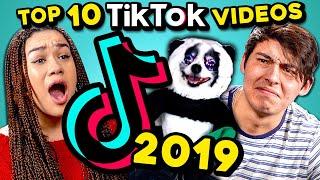 Top 10 Viral TikToks of 2019: Pet & Animal Videos | College Kids React