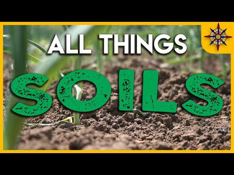 All Things SOIL TAXONOMY