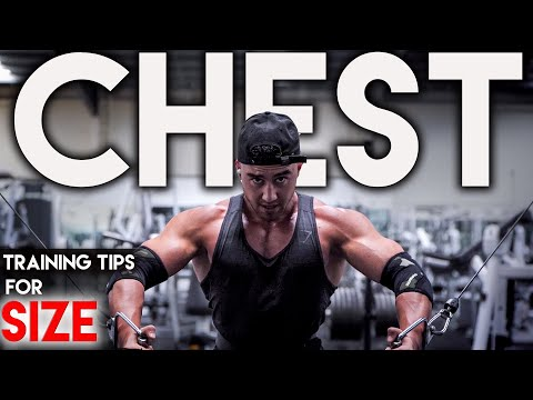 Chest and Tricep Workout | THIS is Exactly How I Train to Build Muscle