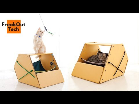5 Incredible Cat Inventions You Never Knew About