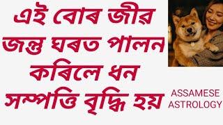 #Vastushashtra. Some Animals good for home prosperity. By Assamese Astrology. #Vastutips.