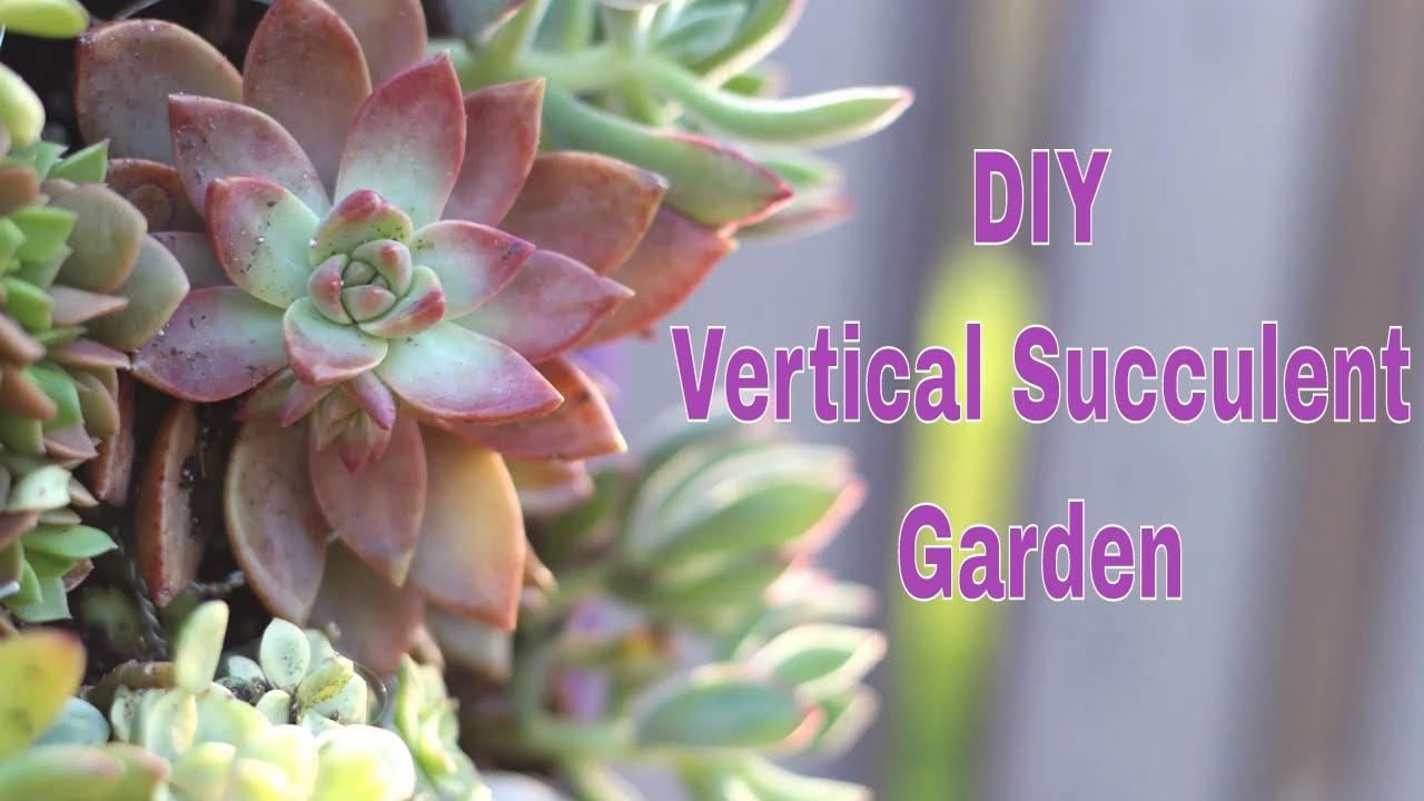 The Home Depot Dih Workshop Vertical Succulent Garden Youtube