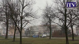 Największe drzewo w centrum Piaseczna- już historią.