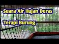 Terapi Suara Air Hujan Untuk Burung  Mp3 - Mp4 Download