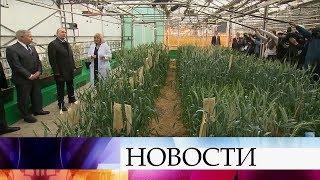 На Всероссийском форуме сельхозпроизводителей В.Путин обсуждает с аграриями качество продукции.(, 2018-03-12T16:08:53.000Z)