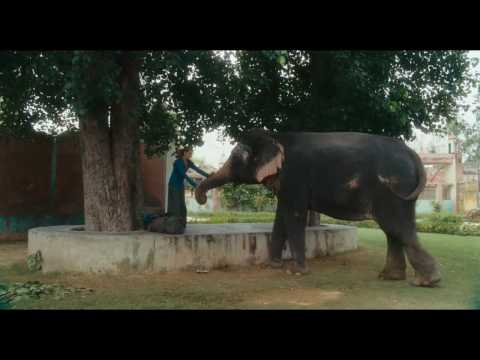 Trailer do filme Comer Rezar Amar