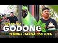 Cucak Ijo Godong Tembus Harga  Juta  Mp3 - Mp4 Download