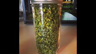 Happy Monday: My First 24 hours of Dehydrating!