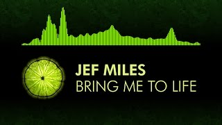 Скачать House Jef Miles Bring Me To Life Feat Rykka