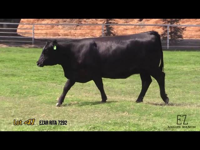 EZ Angus Ranch Lot 41
