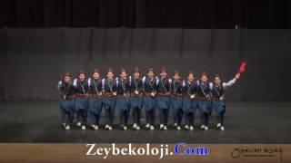 Diyarbakır GSK | Büyükler Geleneksel | 2014 THOF Türkiye Finali #Zeybekoloji