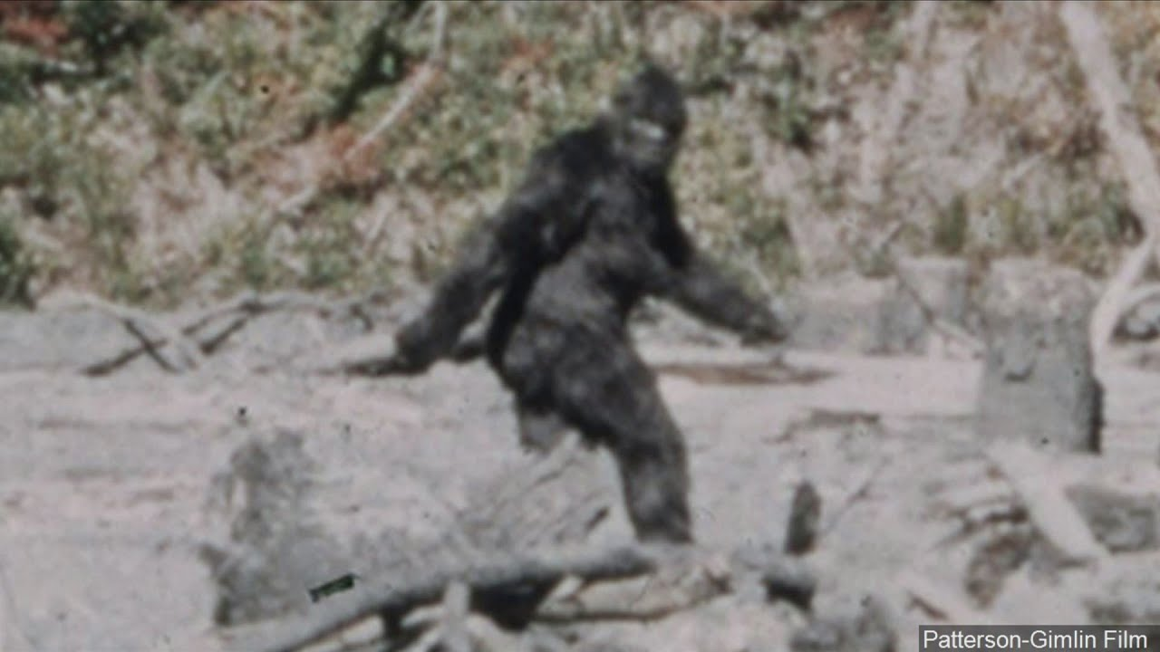 'I know what I saw': Man behind iconic '60s 'Bigfoot' film makes a stop in