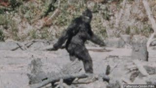 'Iknow what Isaw': Man behind iconic '60s 'Bigfoot' film makes a stop in Fresno