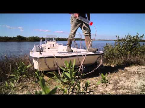 Whitney Coastal Ecology and Matanzas Biodiversity