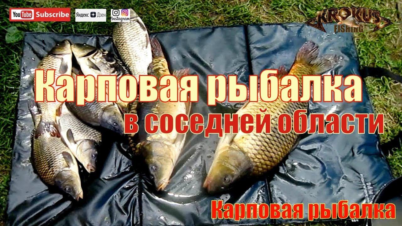 Платные водоемы для рыбалки липецкой области