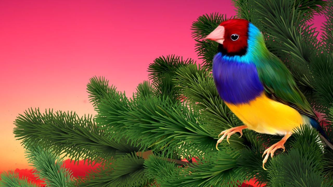 Природа Лес Река Туман Утро Пение Птиц Звуки природы