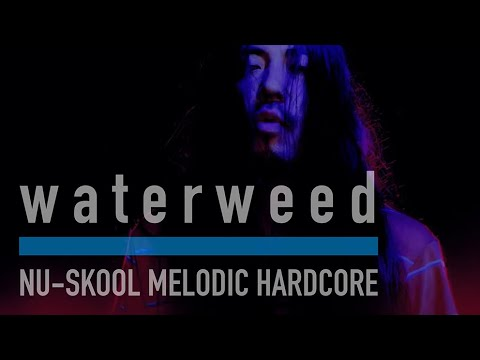 waterweed - Grateful song (Music Video)