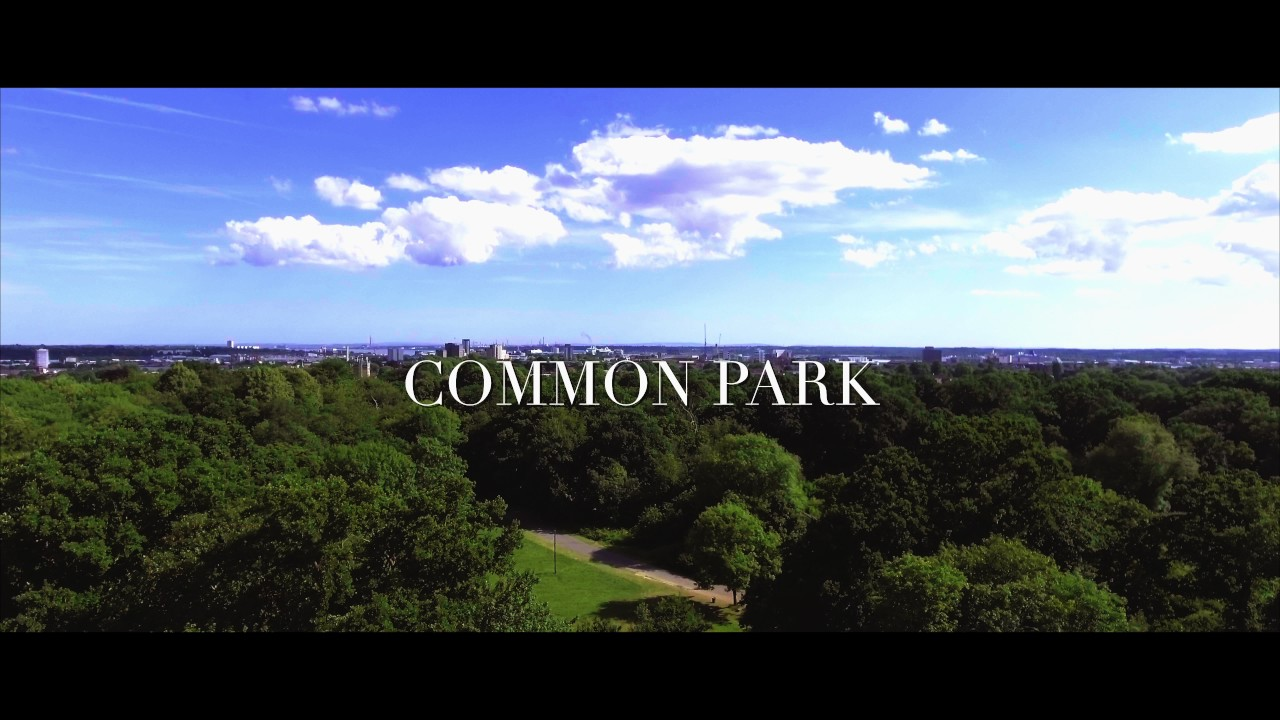 Southampton - Common Park (4K Video)