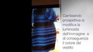 Di che colore è questo vestito?