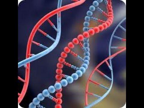 251MBIO   Basic Molecular Biology
