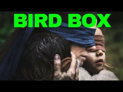 Die Philosophie von Bird Box