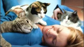 А вы знаете, почему кошка иногда топчет вас лапками?