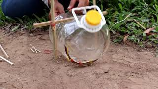Amazing very easy bird traps from Water bottle - Simple bird trap Technology