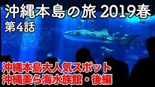2019年4月初旬の沖縄本島の旅第4話。 イルカショーを見終わり、美ら海水族館館内に入ると目の前には巨大な影。ジンベエザメである。 するとジンベエザメは見たことも ...