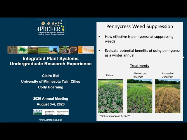 Claire Biel: IPREFER 2020 Integrated Plant Systems – Undergraduate Research Experience Presentation