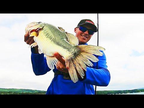 Bass Fishing SHALLOW GRASS On Lake Guntersville!! (They're Biting)