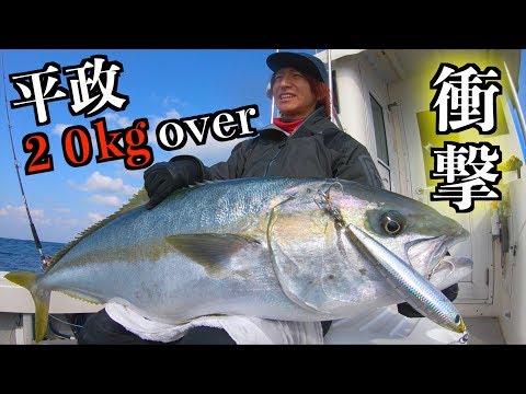 【衝撃】こんな巨大な魚が存在したとは・・・