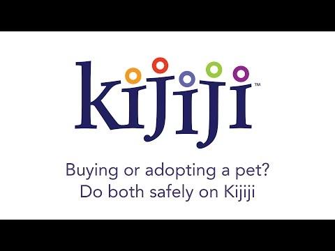 Buying Or Adopting A Pet? Do Both Safely On Kijiji