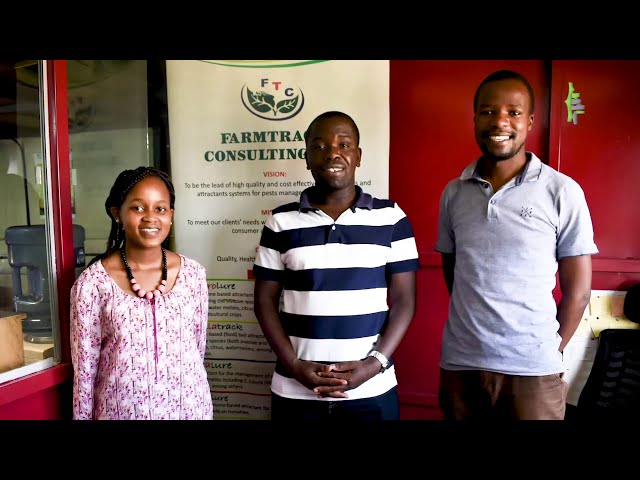 FarmTrack: Creating high quality and cost effective pest management systems in Kenya.