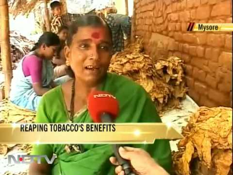 Reaping tobacco's benefits