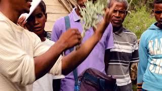 La culture durable de l'arbre fourrager Samata à Madagascar (Version frainçaise et malgache)