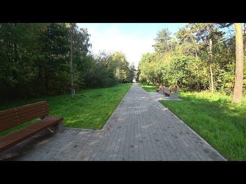 Защитная лесополоса очистных сооружений