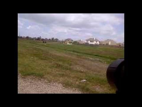 Spotting Scope Tripod Review Field Test