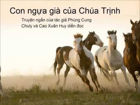 Con ngựa già của Chúa Trịnh.wmv