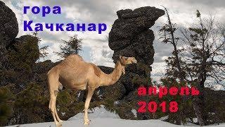 24-28.09.2018 Международные горноспасательные соревнования в Свердловской области