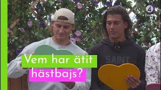 """""""Vem har haft sex i en klätterställning?"""" I Love Island Sverige 2018 (TV4 Play)"""