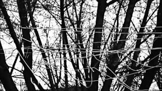 Alternative 4 - Lifeline [official music video]