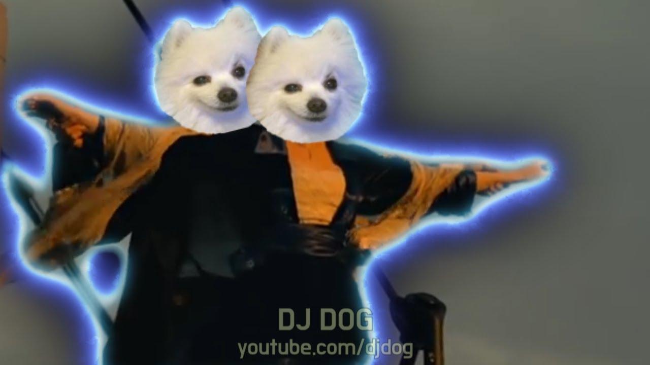 타이타닉 OST 강아지 리믹스 Titanic - My Heart will go on (Gabe the Dog Cover)