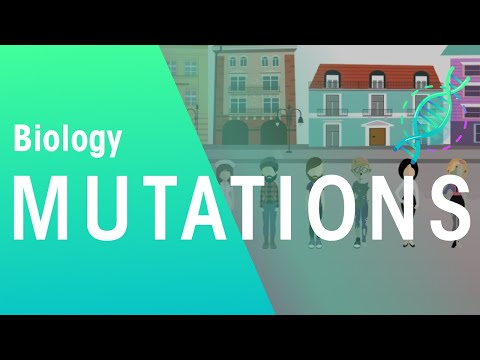 Mutations and Natural Selection | Biology for All | FuseSchool