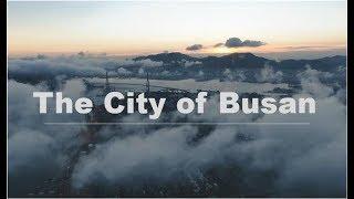 제11회 부산관광영상공모전The City of Busa…