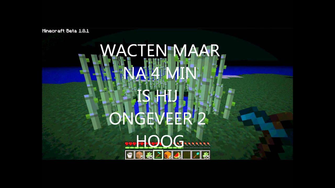 Hoe maak je een suiker farm op minecraft hd youtube - Hoe sluit je een pergola ...